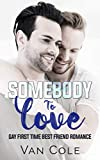 Somebody To Love: Gay First Time Best Friend Romance