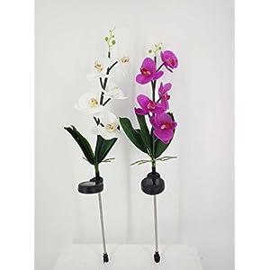 Improved Made of Plastic Orchid Solar Flower, LED Solar Flower, LED Light, Outdoor Light, Solar Light, Garden Light (White)