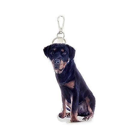 Amazon.com: Cojín Co – Rottweiler perro almohada clave ...