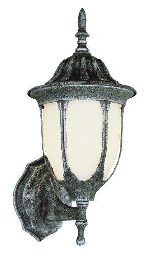 Trans Globe Lighting 4041 SWI Outdoor Hamilton 19