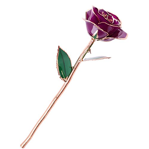 JTTVO Gift for her Real Rose Dipped 24K Gold Flower Preserved Last Forever Special I Love You Gift for Wedding Anniversary Birthday Gift for Wife (Purple)