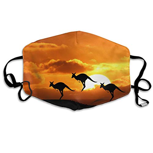 KUYTZDCUTE Kangaroos Mouth Mask Dust Face Mask Washed Reusable Outdoor Activities Windproof 7 X 4.3 Inch. ()