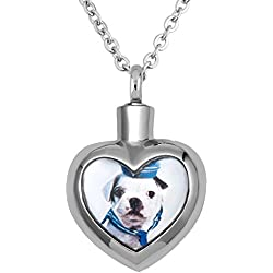Sug Jasmin Dog Photo Memorial Necklace To Put Ashes In For Pet Cremation Keepsake Pendant