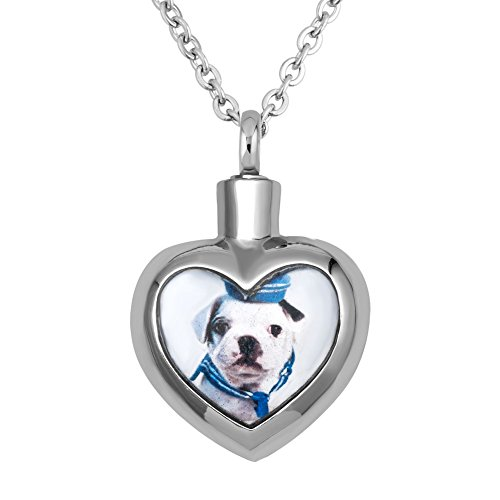 Moonlight Photo (Moonlight Collections Navy Puppy Dog Photo Pet Ashes Necklace Keepsake Pendant Chain Locket)