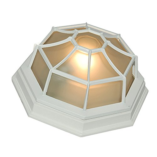 eTopLighting Oil Rubbed Finish Octagonal Exterior Outdoor Wall Ceiling Lantern Light with Frosted Glass APL1153, 9 Inch ()