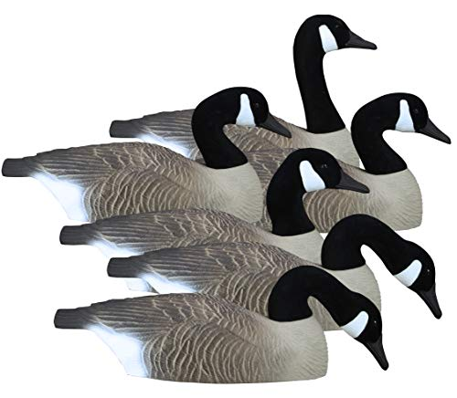 Higdon Outdoors Full-Size Half Shell Hunting Decoys, Canada (Best Goose Decoys For The Money)