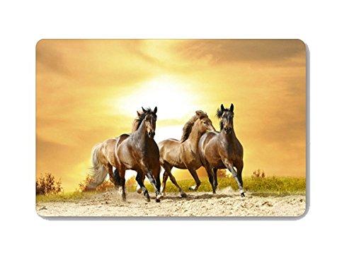 [Gwein Animal Horse Doormat Entrance Mat Floor Mat Rug Indoor Outdoor Front Door Bathroom Mats Rubber Non Slip (23.6