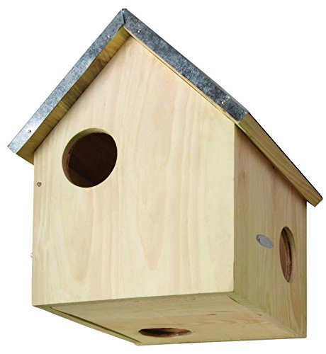 Esschert Design USA WA10 Wooden Squirrel (Squirrel Nesting Box)