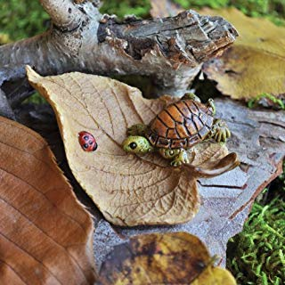 Turtle on a Brown Leaf with a Lady Bug Miniature Fairy Garden Village Accessories Pieces Decoration ()