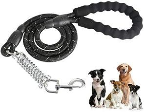 ARGOO Correa Perros - Correa Resistente Reflectante - 100% Nylon - Hilos Altamente Reflectantes cómoda manija Acolchada Caminar Perros de tamaño Mediano Grande (Negro Spring)