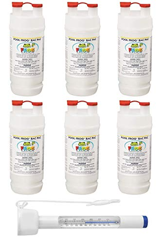 King Technology Pool Frog Mineral Purifier Replacement Chlorine Bac Pac 6 Pack (Bundled with Pearsons Thermometer) ()