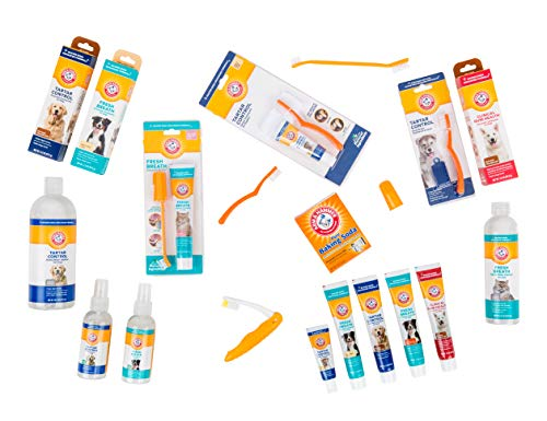 ARM & HAMMER Paste & Brush Set 6