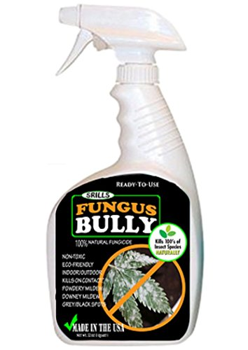 srills-420-fungus-bully-all-natural-organic-plan-mildew-mold-fungus-killer-control-spray-25b-32oz