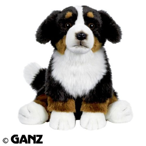 (Webkinz Signature Bernese Mountain Dog with Trading Cards)