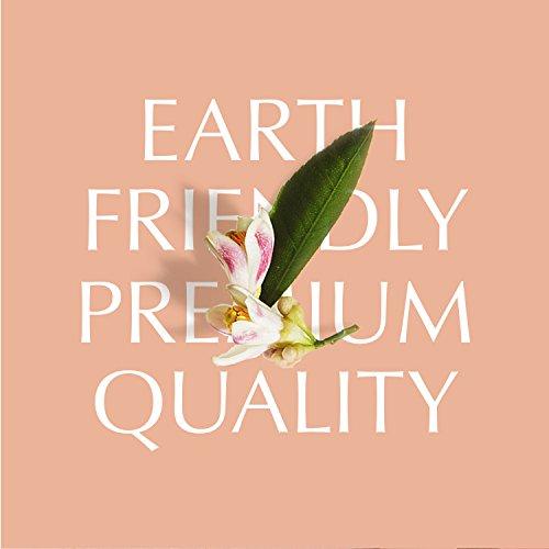 41zFx1ojuAL - John Masters Organics - Vitamin C Anti-Aging Face Serum - Moisturizer, Anti Wrinkle, Reduce Fine Lines, Repair Dry & Damaged Skin - 1 oz