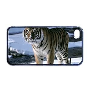 Tiger Apple iPhone 5 PLASTIC cell phone Case / Cover Great Gift Idea