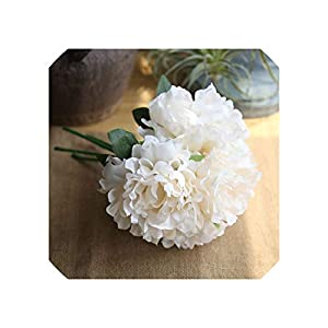 Liliy-luckly 5pcs White Artificial Silk Peony Big Flowers Head for Wedding Decoration,Champagne 75