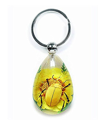 Real Black Legged Leaf Beetle w/ Flower Clear Lucite Keychain ()