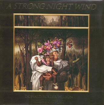 A Strong Night Wind
