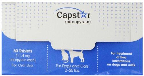 Novartis 60 Count Capstar Bulk Pet Flea Treatment, 2 to 25-Pound, Blue by Novartis