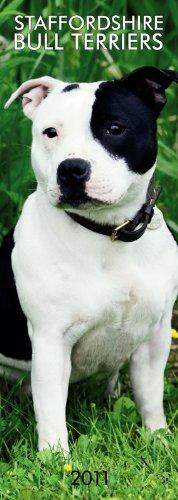 Bull Terrier 2010 Calendar - Staffordshire Bull Terriers 2011 Slimline Calendar