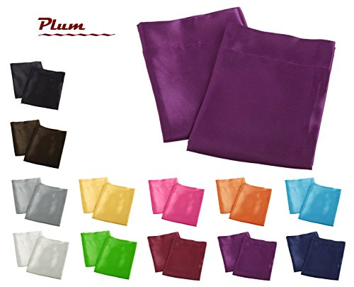 Aiking Home 2 Pieces of Colorful Shiny Satin King Size Pillow Cases, Plum (Plum Shiny)