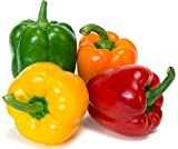 Sweet Pepper Rainbow Bell Seeds Mix Vegetable for Planting Giant Non GMO 30 Seeds