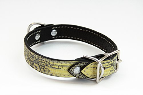 Dog Collar Genuine Lizard Medium (Yellow) by Randall and Sons