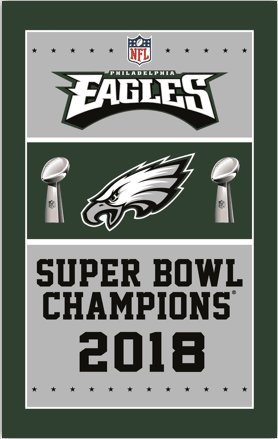 RongJ- store NFL Super Bowl 3-Foot 5-Foot Banner Champion Fl
