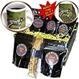 Dogs Australian Cattle - Australian Cattle Dog - Coffee Gift Baskets - Coffee Gift Basket