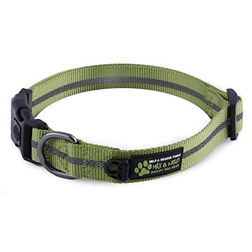 Max Buckle Reflective Dog Collar
