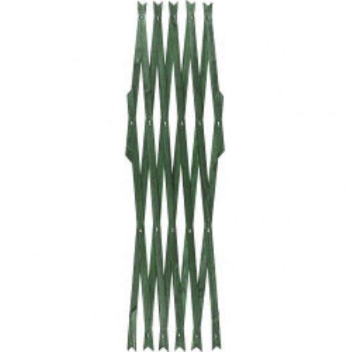 Green Hardwood Expanding Trellis Expands to approx. 6ft x 2ft (1.82m x 0.6m) SupaGarden