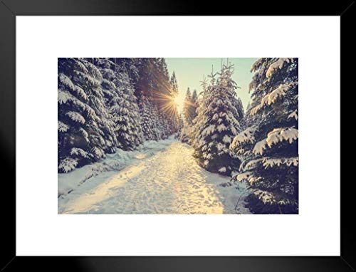 Poster Foundry Sun Setting Snowy Mountain Trail Pine Trees Winter Sunset Photo Matted Framed Wall Art Print 26x20 inch ()