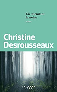 En attendant la neige, Desrousseaux, Christine
