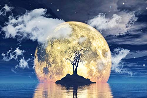 Leyiyi 7x5ft Happy Halloween Backdrop Seaside Tomb Spooky Bare Trees Full Moon Cloudy Sky Galaxy Starry Lake Island Photography Background Cowboy Scary Carnival Photo Studio Prop Vinyl Wallpaper ()