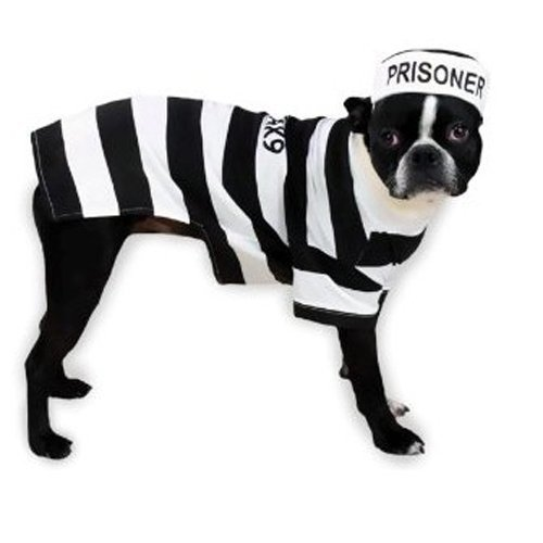 Prisoner Dog Pet Costumes (Casual Canine Prison Pooch Costume, XX-Large)