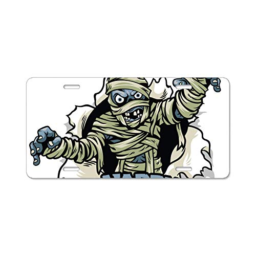 Teisyouhu Halloween Mummy Car License Plate Cover Framed Tag Cover Durable Aluminum License Plate Frame for Women -