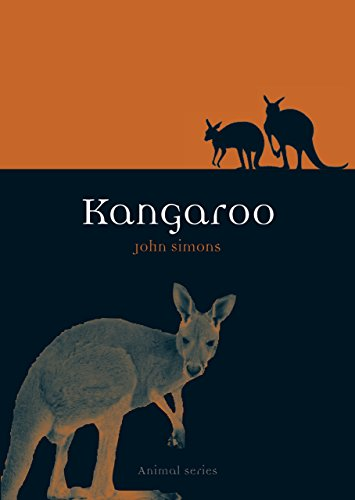 Kangaroo (Animal Series)