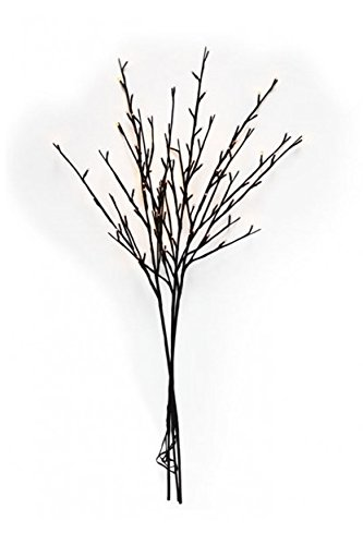 The Light Garden WLWB60 Electric/Corded Willow Branch with 60 Incandescent Lights, 20 - Paragon Hours Outlet