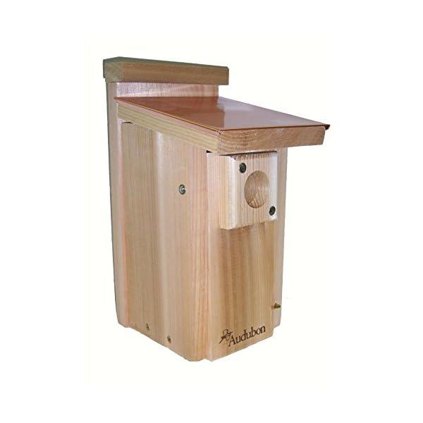 Wood-Link-Coppertop-Bluebird-House