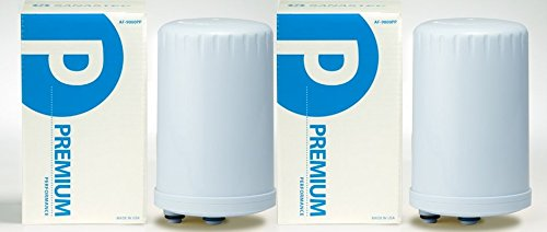 Twin Pack Special Premium Performance Water Filter - (HG Type) FREE SHIPPING by Sanastec