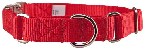 Country Brook Design Heavyduty Nylon Martingale with Premium Buckle - Red - M