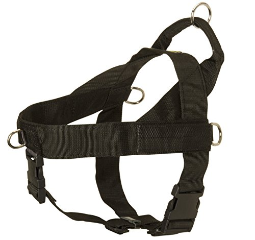 ForDogTrainers Cane Corso Pro Nylon Dog Harness with Handle for Pulling, Tracking, Training and SAR - Size M with Blank Patches (Cane Blank)