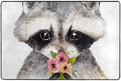 ALAZA Watercolor Raccoon Area Rug Carpet Nursery Rug