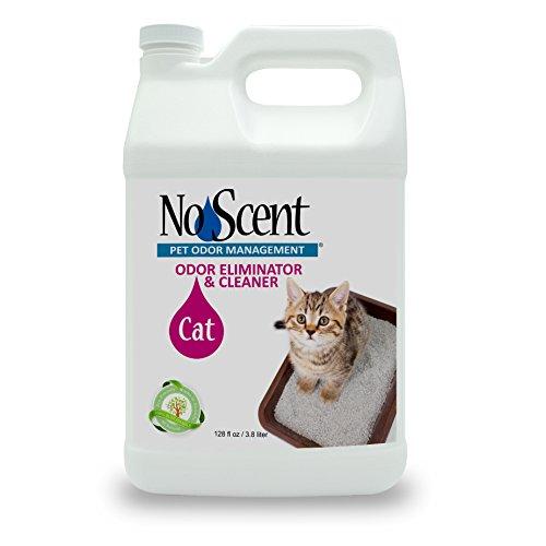 No Scent Cat - Professional Pet Urine Feces Odor Eliminator Cleaner - Safe All Natural Probiotic & Enzyme Formula Smell Remover Litter Box Hardwood Carpet Floors Upholstery (1 gal)