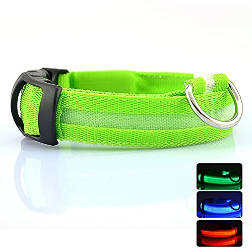 LED Nylon Dog Collars,Classic Solid Colors,USB Rechargeable Pet Safety Collar,Adjustable for Small Medium Large Dogs (L(18-20″/45-53cm), Green)