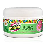 OdoBan Disinfectant Odor Eliminator and All Purpose Cleaner, 32 oz Spray and 1/2 Gallon Concentrate, Original Eucalyptus, Plus Solid Odor Absorber