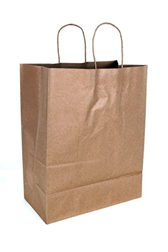 2dayShip Paper Retail Shopping Bags with Rope Handles 13 x 7 x 17 inches, 50 Count by CucinaPrime