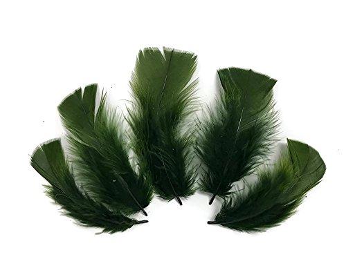 - Turkey Feathers   1 Pack - Olive Green Turkey T-Base Plumage Feathers 0.5 Oz.