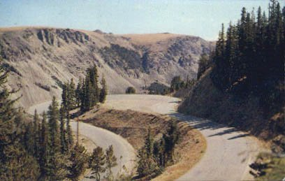 Yellowstone National Park, Montana Postcard from Old Postcards